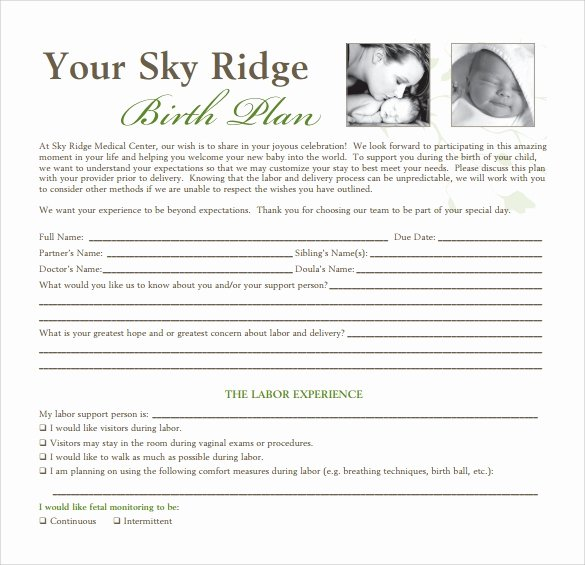 Birth Plan Template Pdf Unique 23 Sample Birth Plan Templates Pdf Word Apple Pages