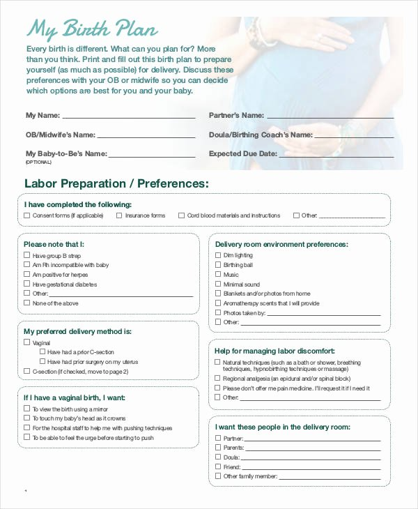 Birth Plan Template Word Doc Awesome Birth Plan Template 16 Free Word Pdf Documents