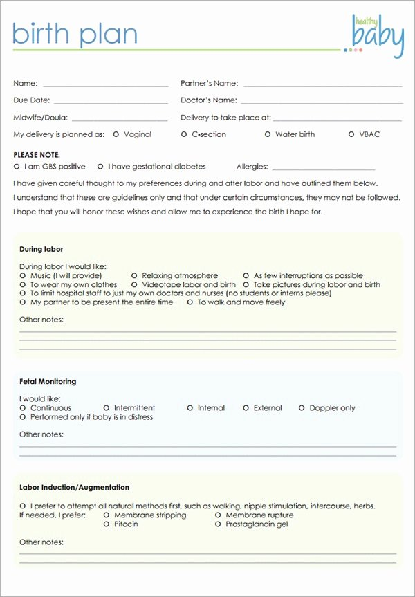 Birth Plan Template Word Doc Lovely Birthing Plan Template