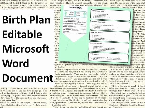 Birth Plan Template Word Doc Luxury Items Similar to Printable Birth Plan Template Editable