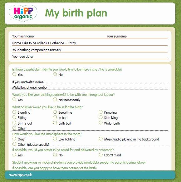 Birth Plan Template Word Elegant 9 Birth Plan Templates – Free Samples Examples & format