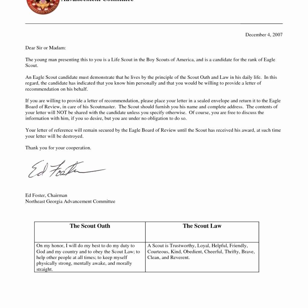 Boy Scouts Letter Of Recommendation Unique Eagle Scout Re Mendation Letter
