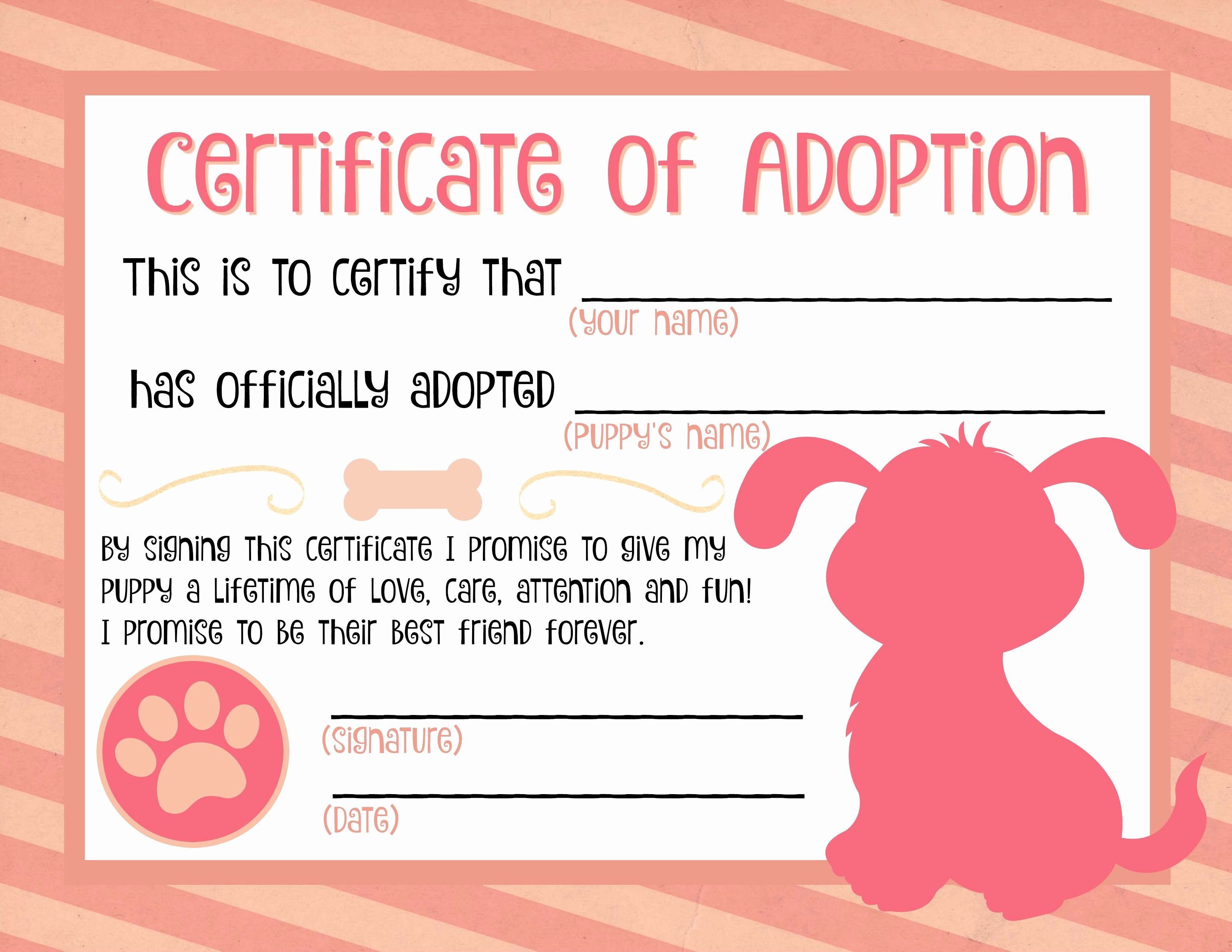 Build A Bear Birth Certificate Template Beautiful Best 25 Adoption Certificate Ideas On Pinterest