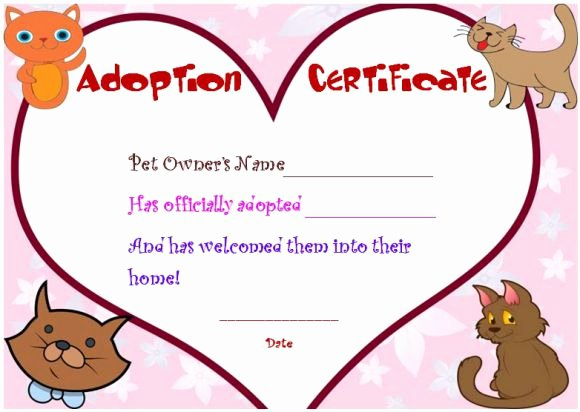 Build A Bear Birth Certificate Template Elegant toy Adoption Certificate Template 13 Free Word