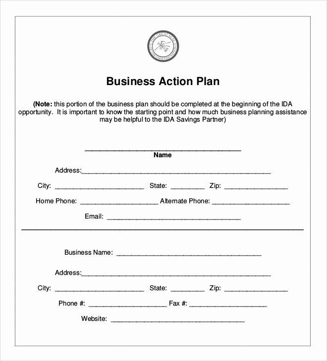 Business Action Plan Template Elegant 6 Sample Business Action Plans