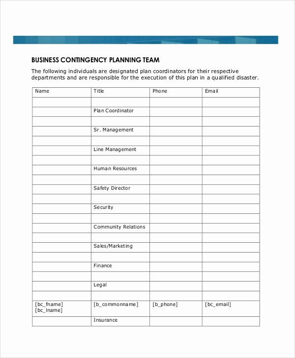 Business Continuity Plan Template Awesome 8 Sample Business Plans