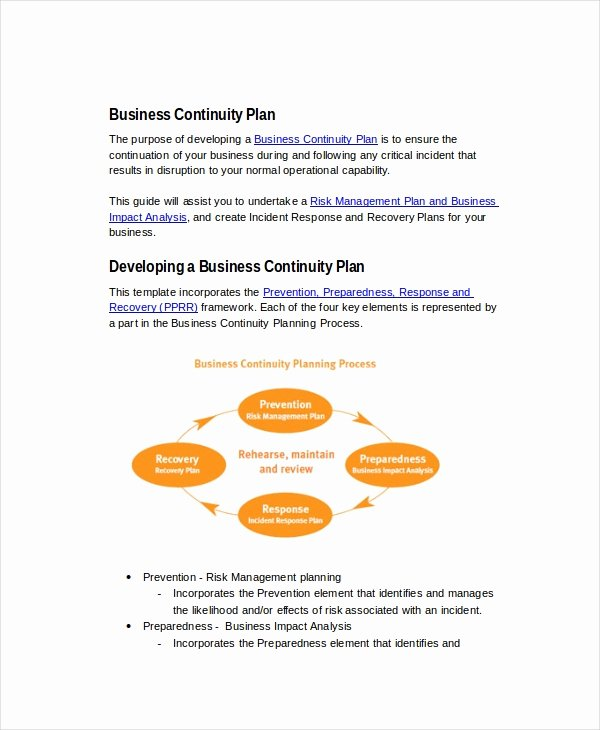 Business Continuity Plan Template New 25 Business Plans Free Sample Example format