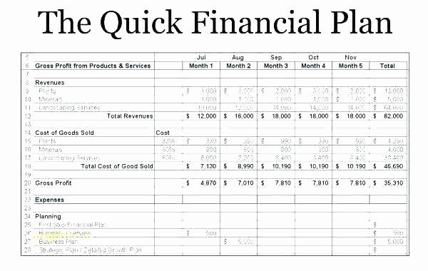 Business Financial Plan Template Excel Lovely Financial Section Of A Business Plan – Karamatsews