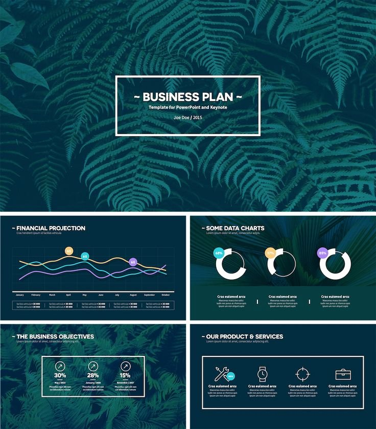 Business Plan Ppt Template Luxury 25 Best Ideas About Business Plan Presentation On