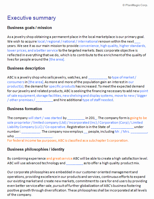 Business Plan Template Doc Lovely Business Plan Template Word Document Boisefrycopdx
