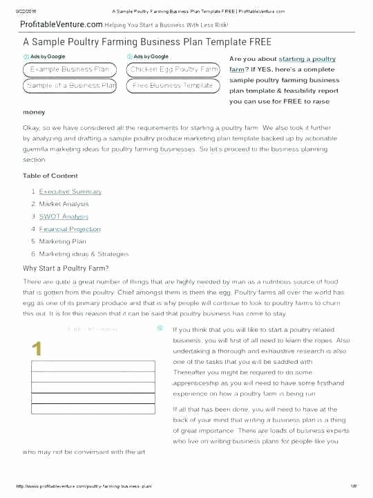 Business Plan Template Doc New Poultry Farming Business Plan Doc – Blogopoly