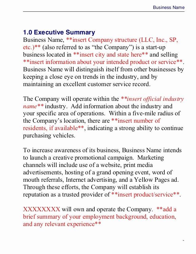 """Business Plan Template Doc Unique Business Plan Template Master Plansc"""""""