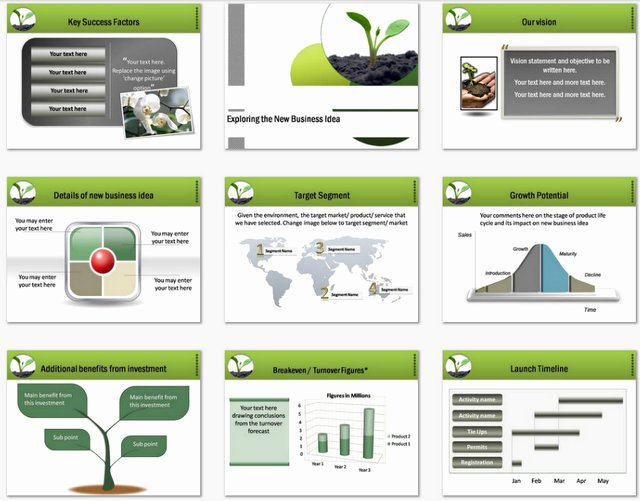 Business Plan Template Ppt Beautiful Powerpoint Business Plan Growth Template