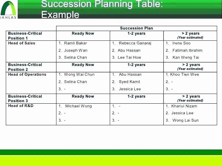 Business Succession Plan Template Best Of Succession Planning Template Excel Readleaf Document