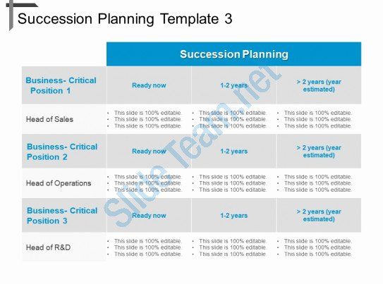 Business Succession Plan Template Luxury Style Essentials 2 Pare 3 Piece Powerpoint