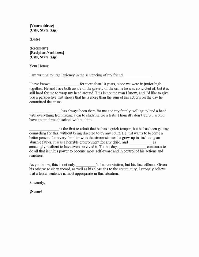 Buy Letter Of Recommendation Beautiful Writing Plea Leniency Letter Judge Character Reference