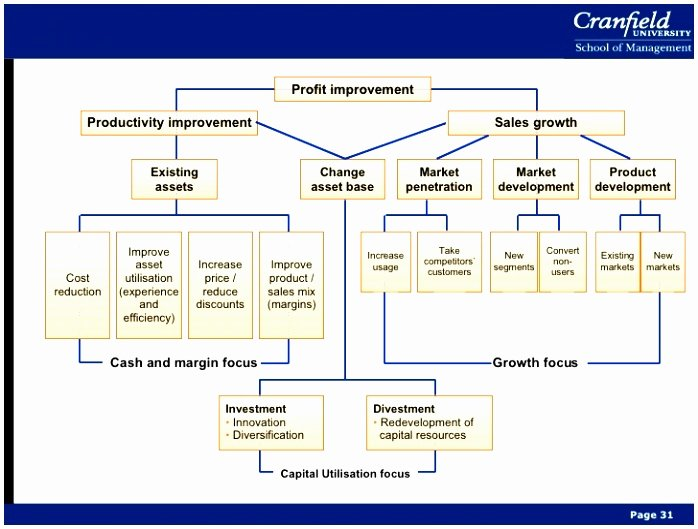 Capital Improvement Plan Template Inspirational 5 Capital Improvement Plan Template Wayam