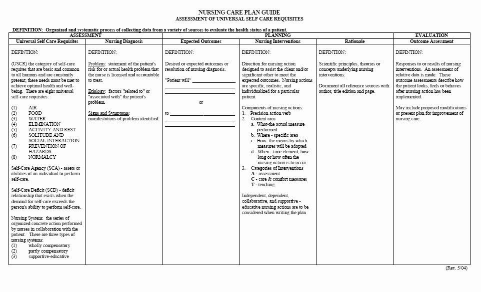 Care Plan Template Nursing Inspirational Free Printable Blank Nursing Care Plan