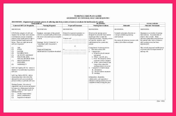 Care Plan Template Nursing Luxury Nursing Care Plan Template
