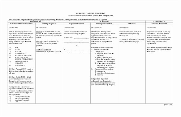 Care Plan Template Pdf New Nursing Care Plan Template