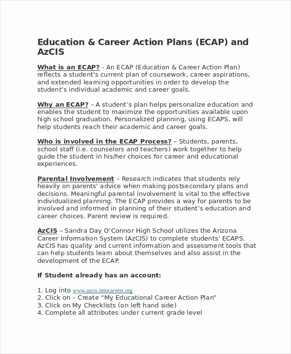 Career Action Plan Template Lovely Career Action Plan Template 15 Free Sample Example