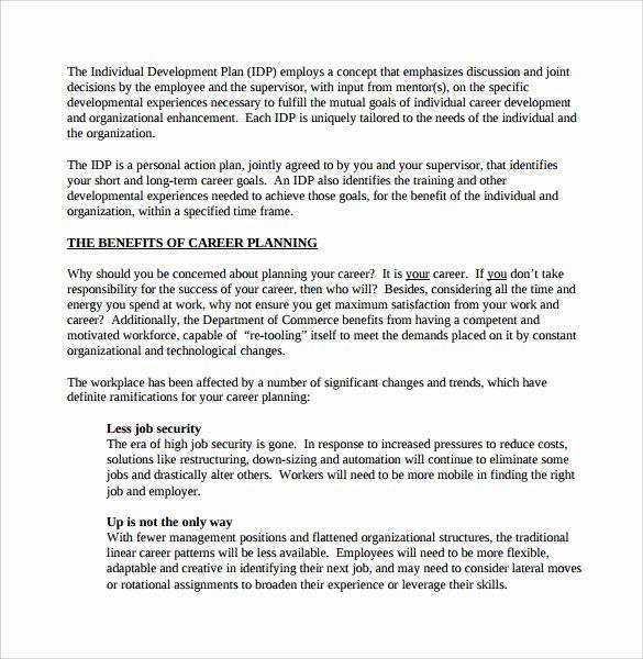 Career Action Plan Template Luxury Sample Career Plan 11 Documents In Pdf Word