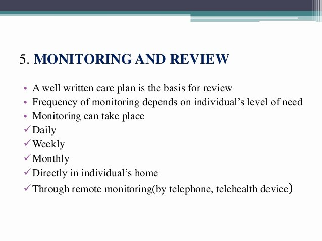 Case Management Care Plan Template Awesome Case Management Plan Template Car Reportspdf819
