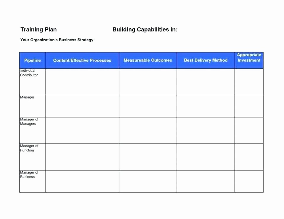 Case Management Care Plan Template Fresh Manager Schedule Template Project Management Schedule