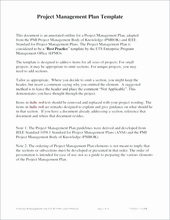 Case Management Plan Template Luxury Business Case Project Management Template