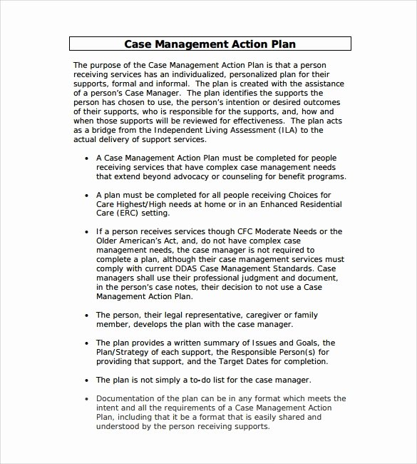 Case Management Plan Template Luxury Sample Management Action Plan Template 8 Documents In