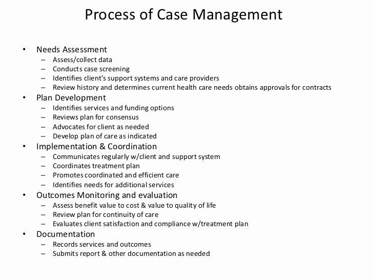 Case Management Treatment Plan Template Beautiful Case Plan Template social Work Takeme