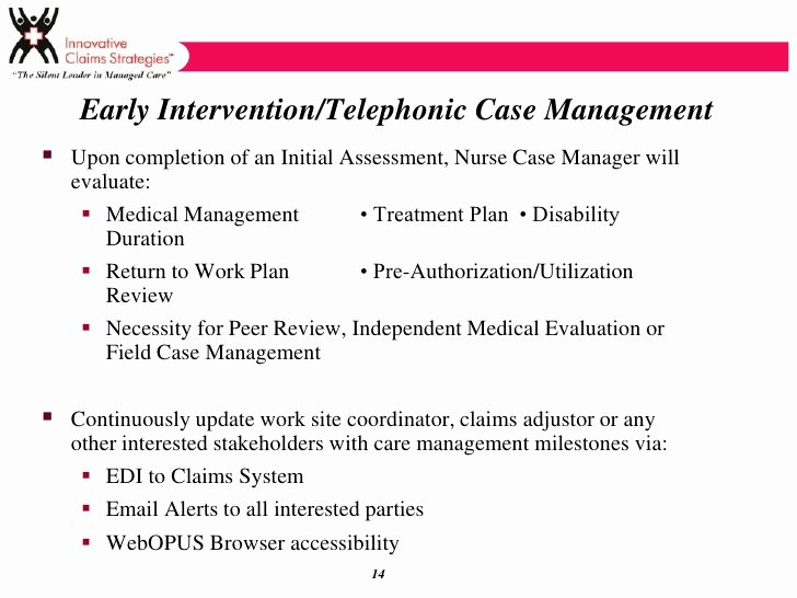 Case Management Treatment Plan Template Beautiful Ics Services Overview Template Wc