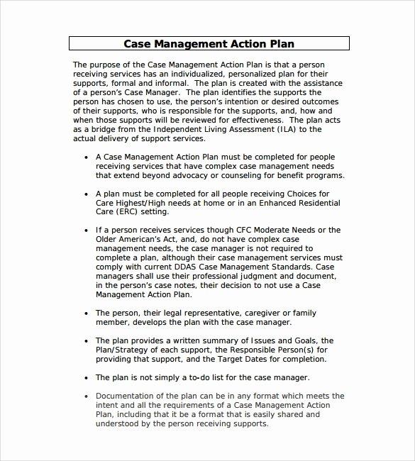 Case Management Treatment Plan Template Best Of Management Action Plan Template 9 Download Documents In