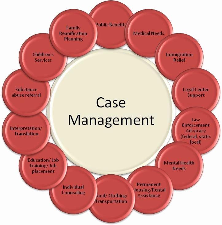Case Management Treatment Plan Template Elegant Case Management