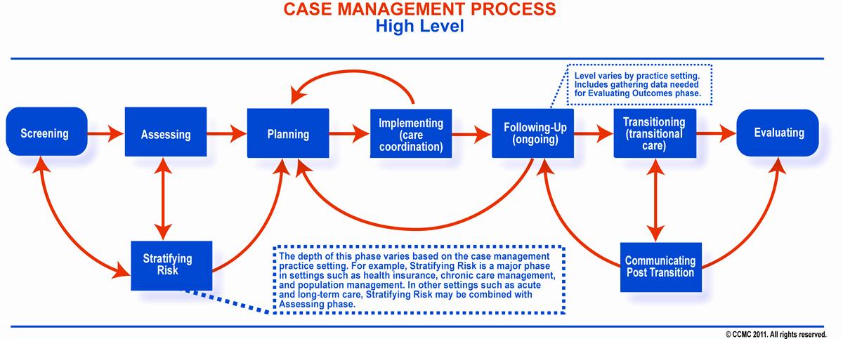 Case Management Treatment Plan Template Inspirational Case Management Knowledge