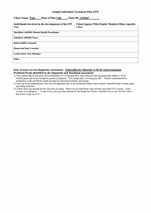 Case Management Treatment Plan Template New Sample Individual Treatment Plan Printable Pdf