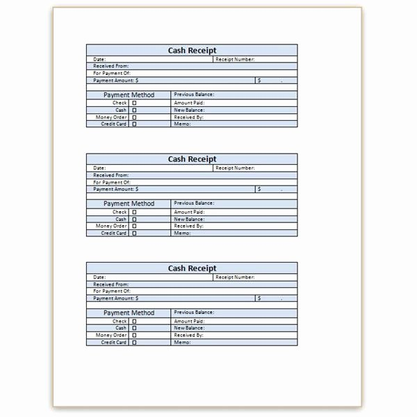 Cash Receipt format In Excel Fresh Download A Free Cash Receipt Template for Word or Excel