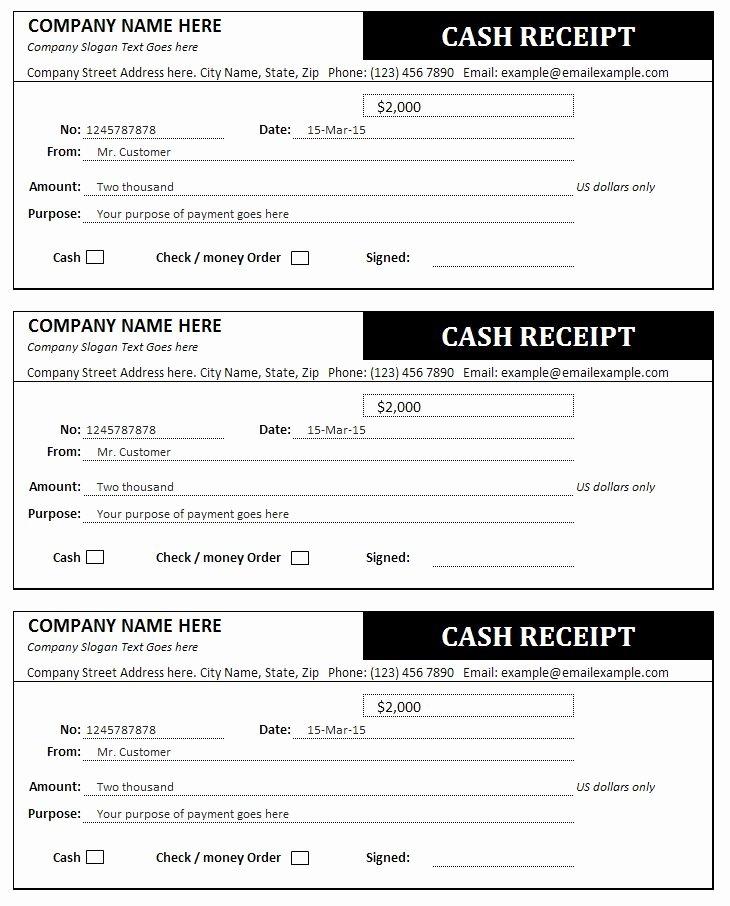 Child Care Payment Receipt Luxury Cash Receipt Template