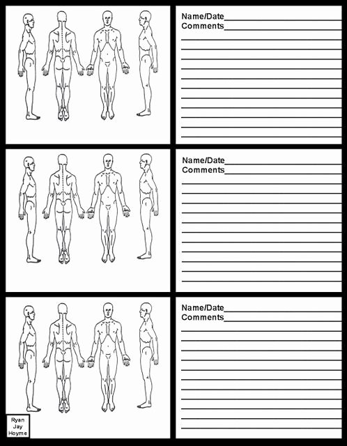 Chiropractic soap Note Example Lovely Massage therapy soap Note Charts Business