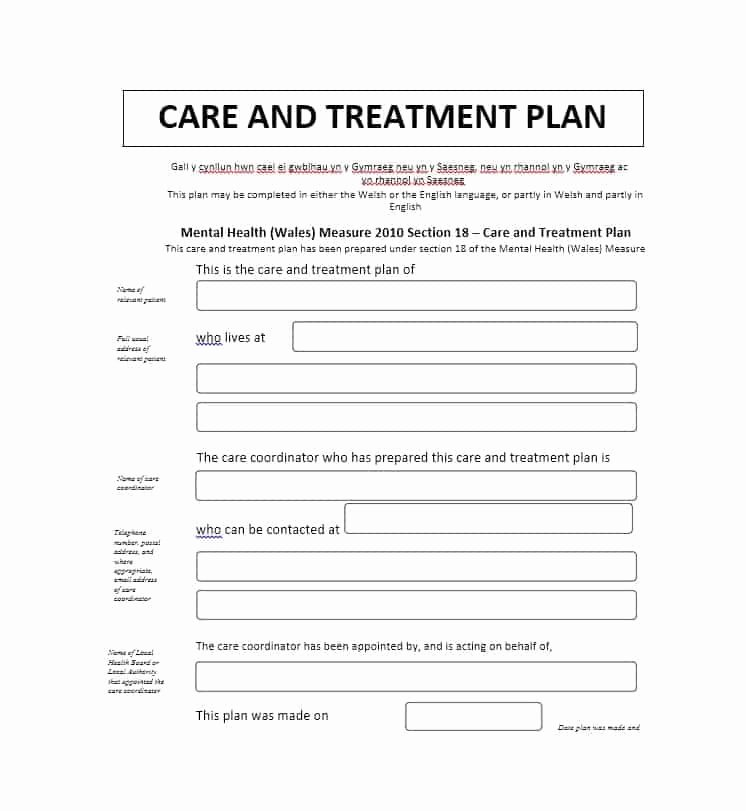 Chiropractic Treatment Plan Template Elegant 35 Treatment Plan Templates Mental Dental Chiropractic