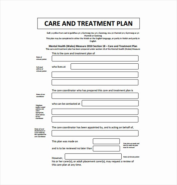 Chiropractic Treatment Plan Template Luxury 15 Treatment Plan Templates Sample Word Google Docs