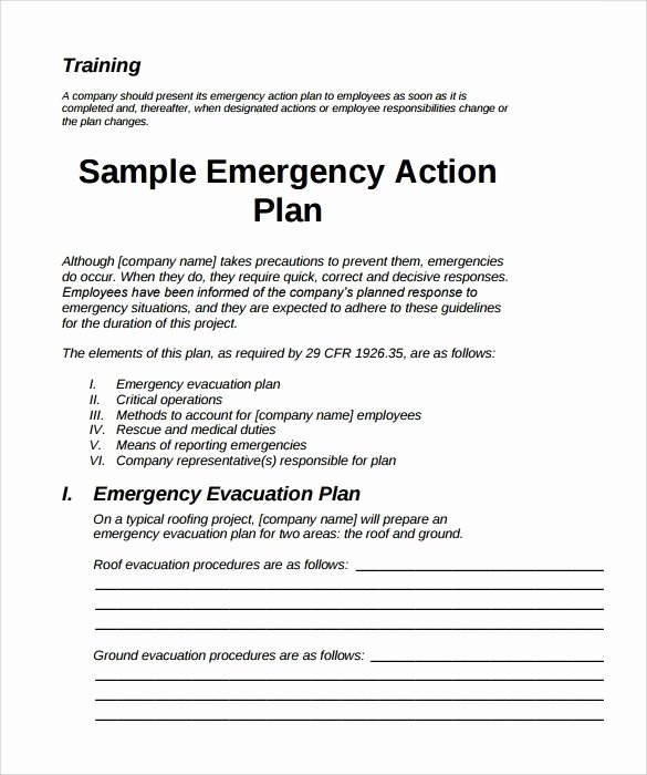 Church Emergency Action Plan Template Luxury Emergency Action Plan Template