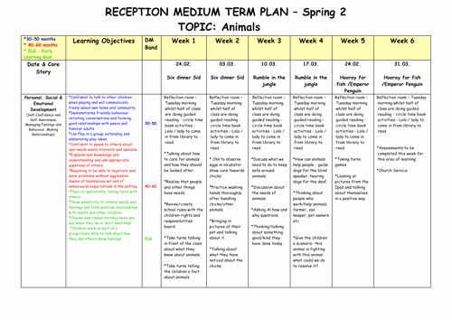 College Four Year Plan Template Lovely Medium Term Plan On Animals Early Years Foundation Stage