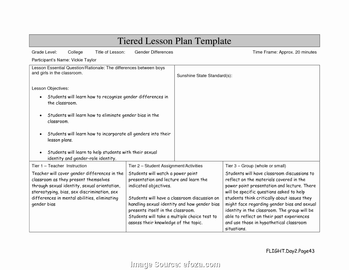 College Lesson Plan Template Lovely Typical Lessons Learned Template Point Lesson Learned