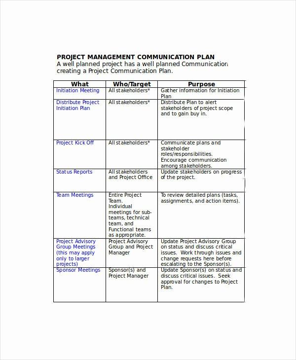 Communication Plan Template Word Beautiful Free Munication Plan Templates 37 Free Word Pdf