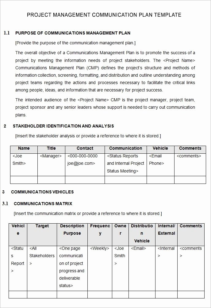 Communications Plan Template Word Awesome Project Management Template Project Management