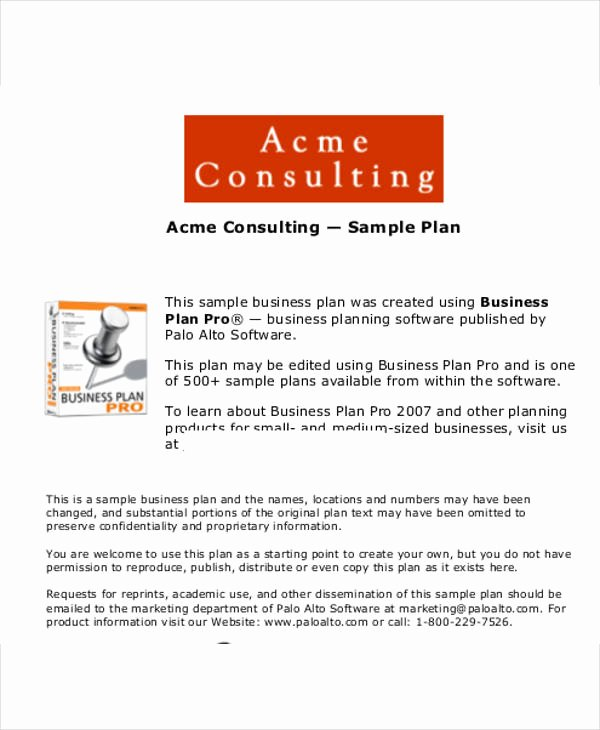 Consulting Business Plan Template Elegant 13 Consulting Business Plan Templates Free Word Pdf