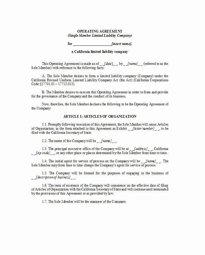 Cottage Operating Agreement Template Best Of 30 Professional Llc Operating Agreement Templates