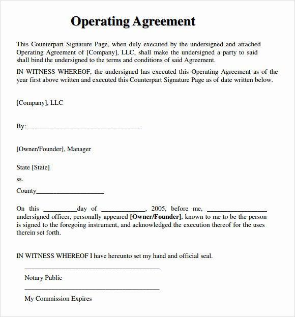 Cottage Operating Agreement Template Best Of 9 Sample Llc Operating Agreement Templates to Download