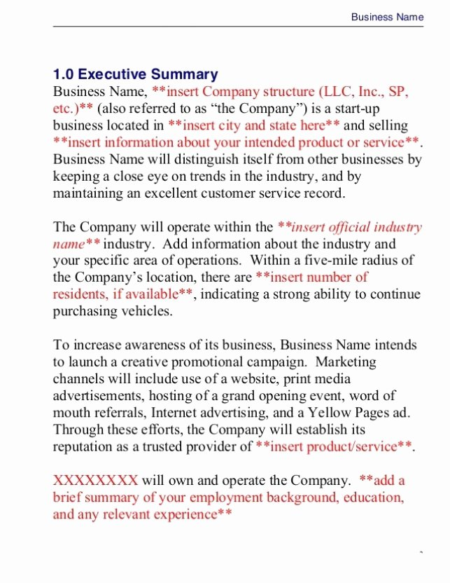 Creative Business Plan Template Elegant Business Plan Template Doc Seven Business Plan Template